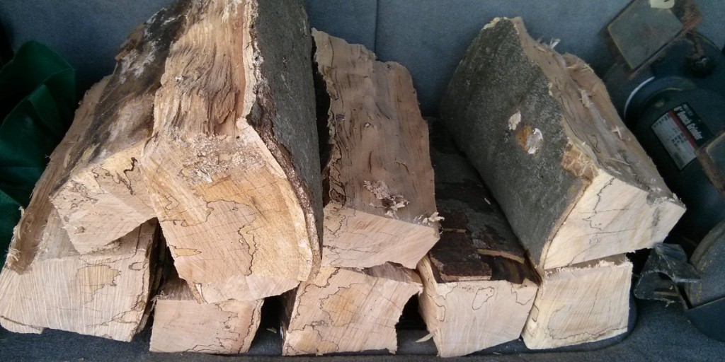 Spalted Maple Firewood